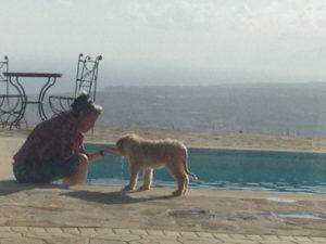 Mies en Willem in Andalusie